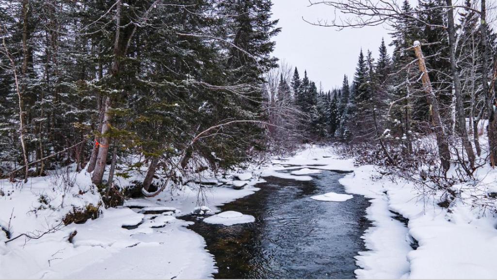 La rivière Jaune et son bassin versant
