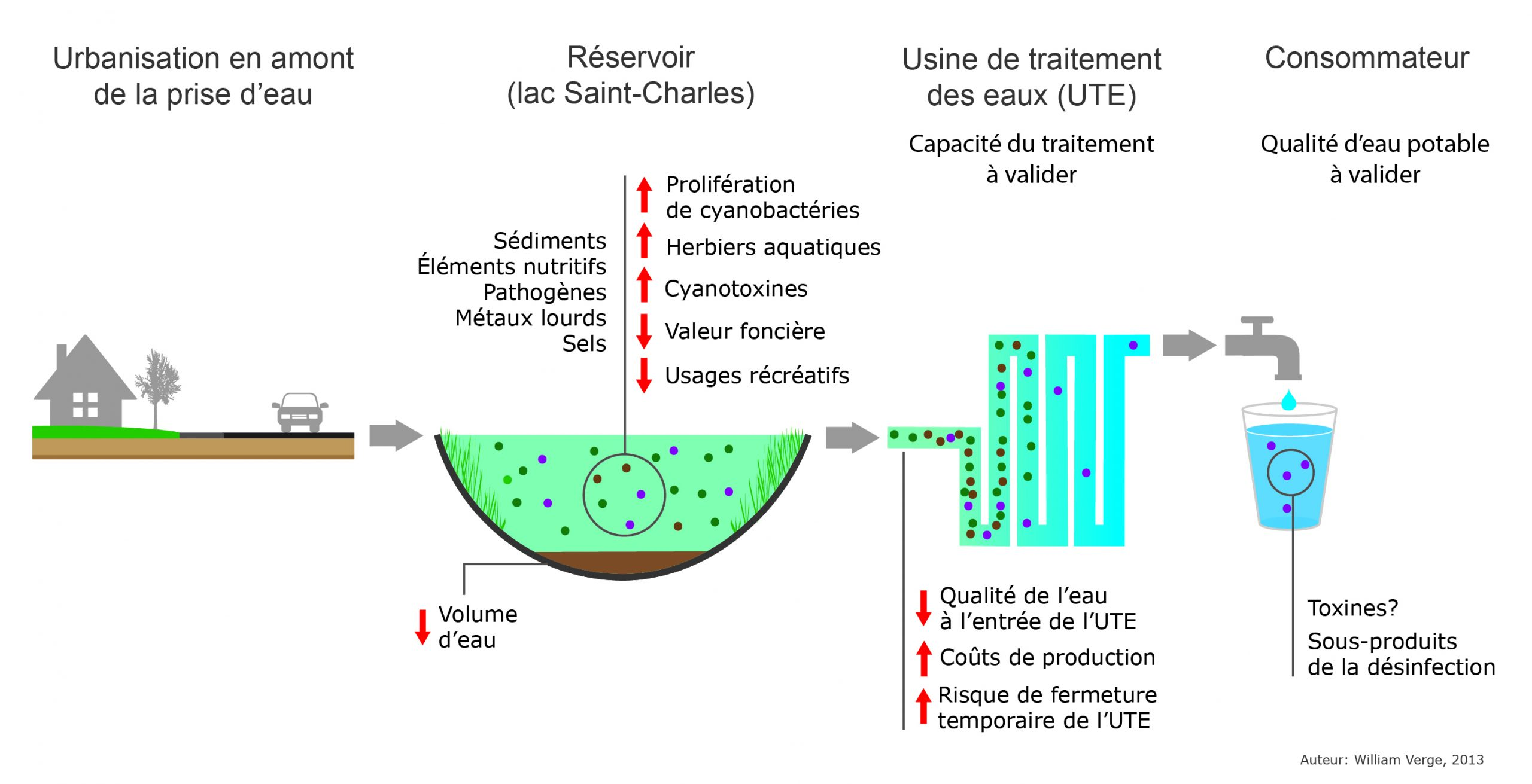 Figure : Impacts de l'urbanisation sur l'eau