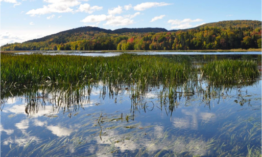 Le lac Saint-Charles :  une ressource indispensable